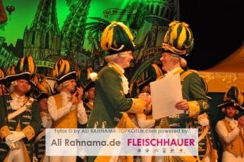 ehrengarde_regimentsappell_05012016_146
