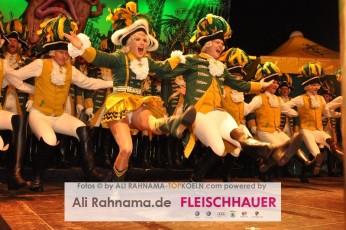 ehrengarde_regimentsappell_05012016_154
